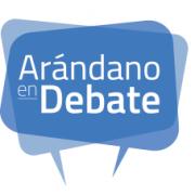 arandano_debate