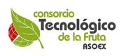Consorcio Tecnologico